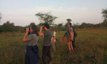 3 Days Lake Mburo Birding Safari
