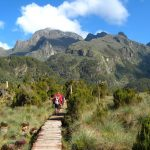 Mount Rwenzori National park